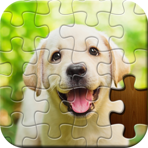 Jigsaw Puzzle  5.60.037 APK MOD (Unlimited Coins) Download
