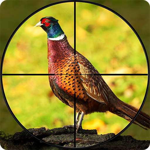Pheasant Shooter: Crossbow Birds Hunting FPS Games 1.1 APK
