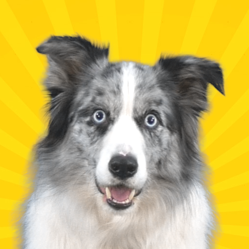 Real Pets™ by Fruwee  299 APK MOD (Unlimited Coins) Download